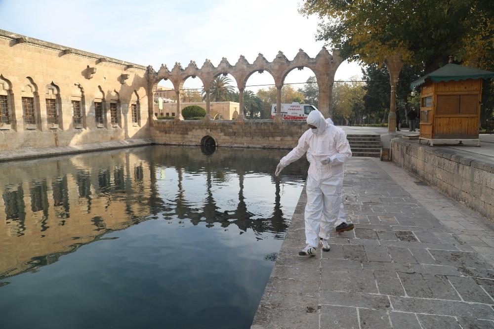 Şanlıurfa'da boş kalan tarihi mekanlar ilaçlandı