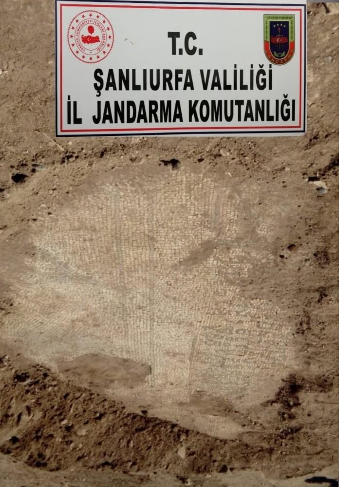 Roma Dönemi'ne ait mozaikleri sökmeye çalışırken jandarmaya yakalandılar