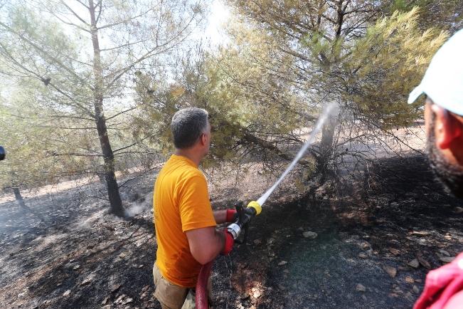 Göbeklitepe Çevresindeki Yangın Kısa Sürede Söndürüldü