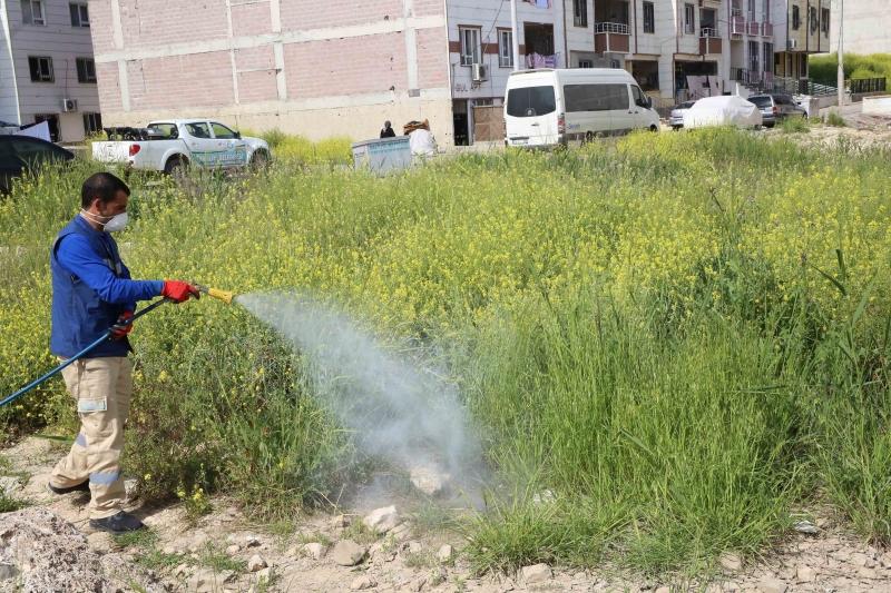 Haliliye'de İlaçlama Çalışmaları Aralıksız Devam Ediyor