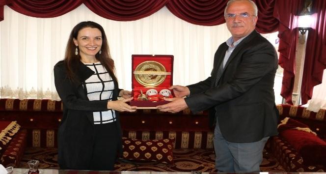 Unıcef Türkiye temsilcisi Şanlıurfa'da