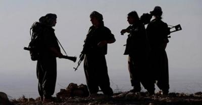 2 terör örgütü mensubu daha ikna edilerek teslim oldu