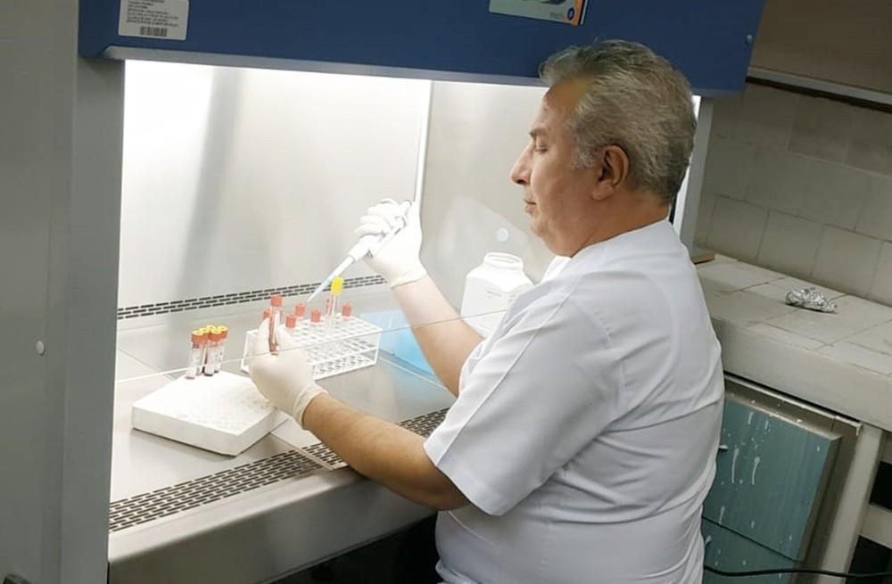 İneklerdeki üç gün hastalığına aşı geliştiriliyor