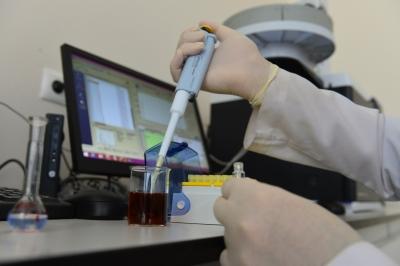 Harran Üniversitesi, Doğu ve Güneydoğu Anadolu Bölgesindeki İthal Çay Tüketimini Araştırdı