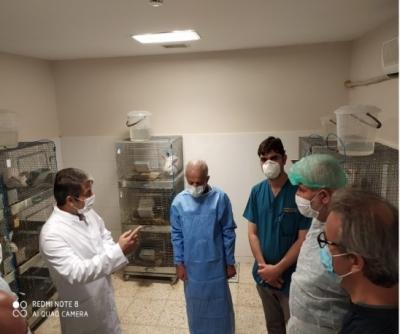 Harran Üniversitesi Hayvan Deneyi Uygulama ve Araştırma Merkezi Faaliyetleri ile Göz Dolduruyor