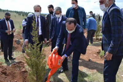 Pandemi sürecinde hayatını kaybeden sağlık çalışanları anısına ağaç dikim töreni gerçekleştirildi.