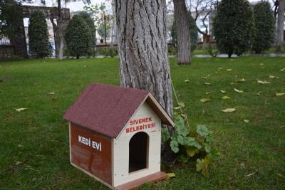 Siverek Belediyesi her parka kedi evi kurdu