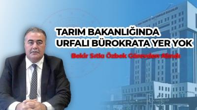 URFALI BROKRATLAR SAHİPSİZ
