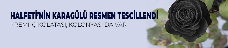 HALFETİ'NİN KARAGÜLÜ RESMEN TESCİLLENDİ.