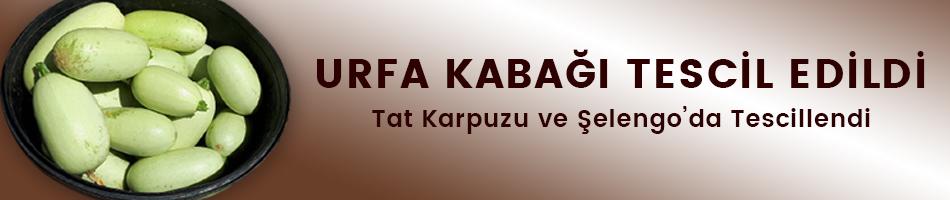ŞANLIURFA'YA ÖZGÜ SEBZELER TESCİL EDİLDİ
